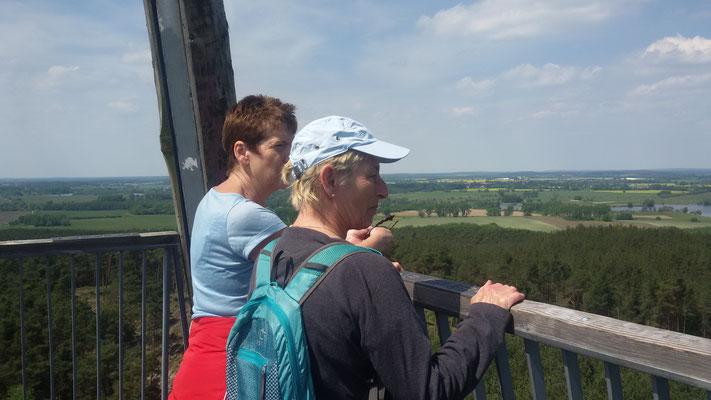 Blick vom Götzer Turm in die nahe...
