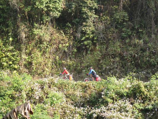 ©www.weltradeln.de - Karin und Kirtap on the Road in wundervoller Landschaft - es grünt so grün in Manipur...