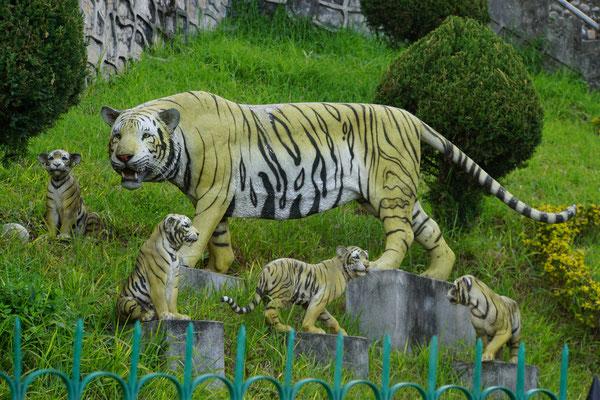 Die Tigerin und ihre dei Jungen als Dekoration