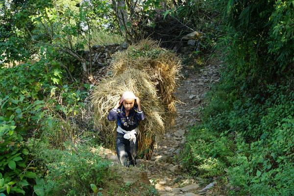 Kinder tragen in Nepal schon sehr früh schwere Lasten...