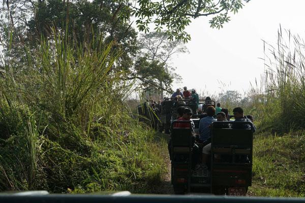 Stau der TATA-Jeeps vor dem Dschungelcheckpoint - dahinter endlose Weiten...