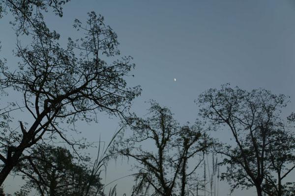 ...der Mond geht auf - und damit ein weiterer wundervoller Reisetag zu Ende - bin ich ein GLÜCKSPILZ...!!!