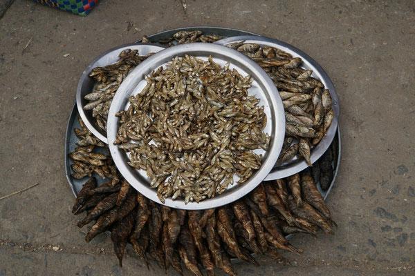 Getrockneter Fisch auf dem Markt in Imphal...