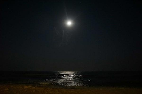 Der Mond ist aufgegangen... Sterne waren keine zu sehen letzte Nacht...