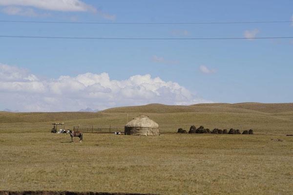 Kirgistan begrüsst mich mit seiner wundervollen Landschaft - ähnlich der Mongolei?!...