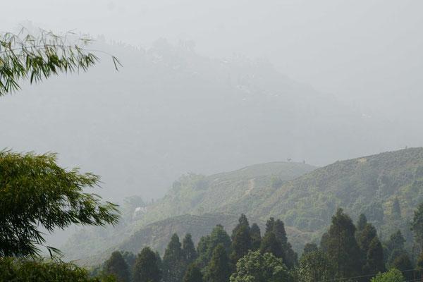 So könnte es aussehen in Darjeeling, wenn der Nebel sich lichten würde...