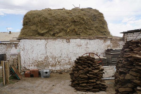 Im Homestay werden aus Yakdung Ziegel geformt, welche dann als Brennmittel dienen - das Heu für die Tiere wird hier auf den Dächern des Stalls gelagert...