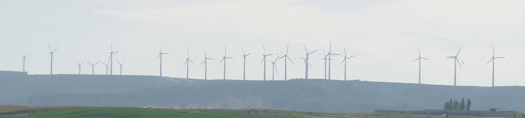 Kein Wunder stellen sie hier sooooo vieeeeele Windräder auf, wenn der Wind sooooo stark und hemmungslos bläst...