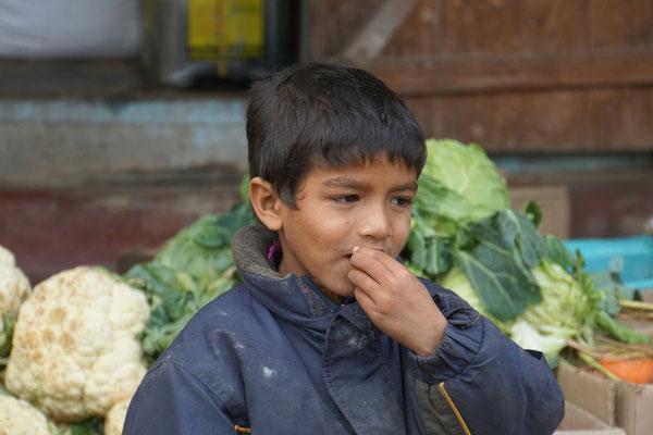 Der Junge des Gemüshändlers vor der Lodge in Noney - ich hoffe für ihn, dass er aus seiner Cleverness was machen und entsprechende Schulen besuchen kann...