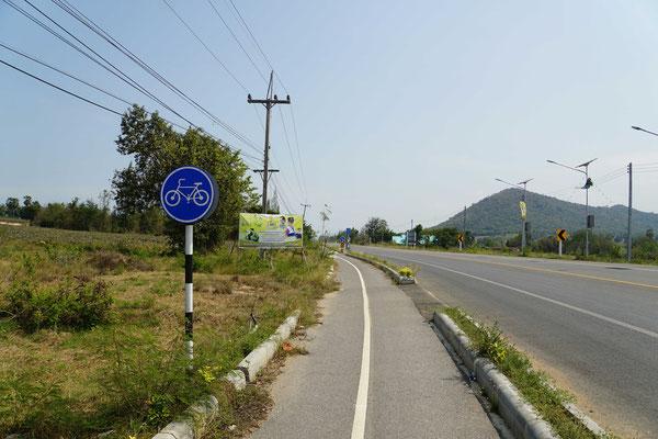 Radwege in Thailand - die ersten seit Nepal... Benutzt werden sie offenbar nicht so heftig...