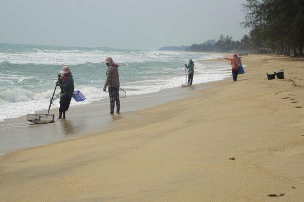 Heute Morgen habe ich am Strand die Muschelfischerinnen beobachtet...