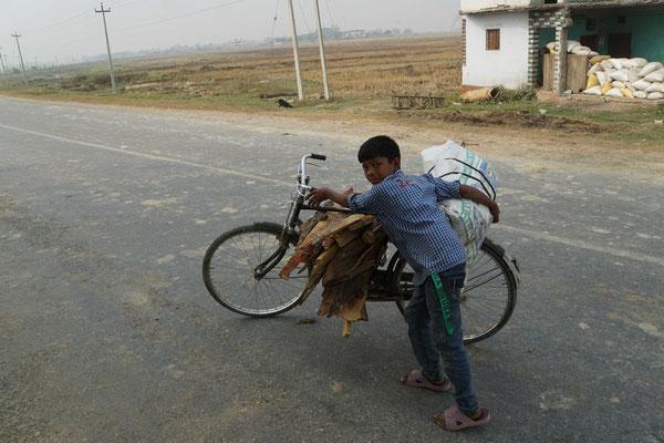Er transportiert Holz auf seinem Velo - auch eine Lebensschule - statt der richtigen Schule...