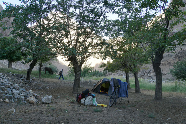 Der Morgen erwacht...: Geschlafen unter Maulbeerbäumen - der Bauer führt seine Kuh zum Weideplatz...