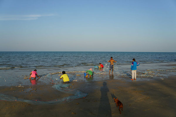... die Helfer am Strand sammeln die zappelnden Fische dann ein und bringen sie in Schubkarren der nahen Baustelle weg...