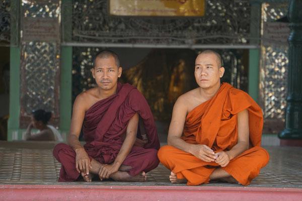 Mönche in der Shwedagon Pagode...