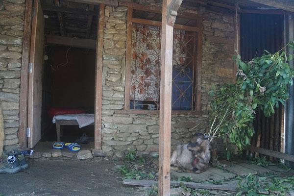 Blick zu meinem Zimmer bei Surat daheim - vor dem Zimmer wohnte der coole Ziegenbock, bis er im Tempel...