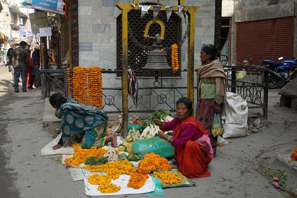 Orange Tagetes findet man in ganz Nepal in jedem noch so kleinen Garten - liebevoll werden sie auch in Töpfen auf Fenstersimsen oder Terrassen gehegt und gepflegt - sie sind sehr wichtige Blumen für Rituale, Gebete und Feste ...
