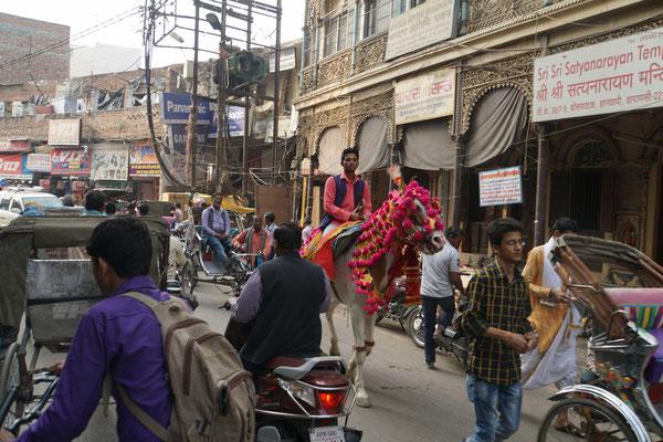 Wie gesagt: Auf Indiens Strassen findet man alles...