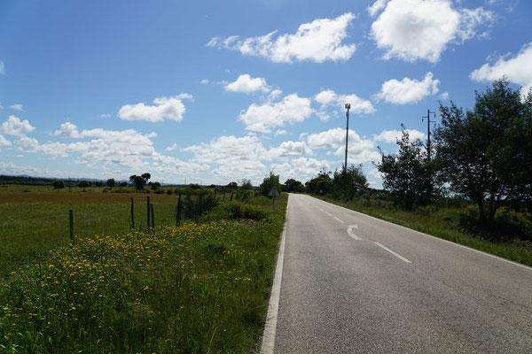 Schöne Landschaft, die Wolken hängen tief - kein Verkehr - so macht Radreisen SPASS...