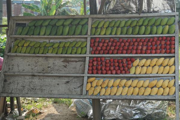 Der erste Fruchtstand seit Ewigkeiten - in Thailand ware sie VIEL häufiger anzutreffen...