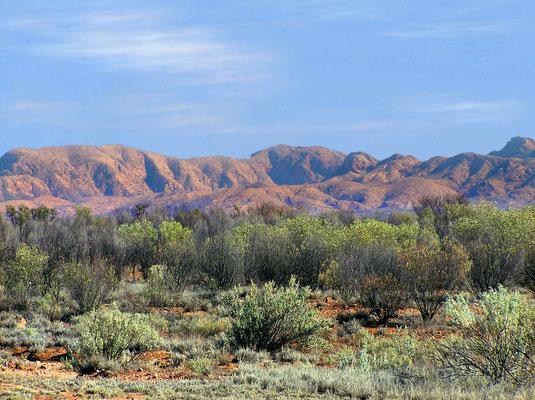 Die roten Felsen, die häufig von Tälern und Schluchten unterbrochen werden, sind typisch für die MacDonnell Ranges.