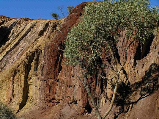 Der rotgelbe Ocker (ochre) wird von den Aborigines für zeremonielle und medizinische Zwecke benuzt.