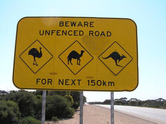 Eine grosse Gefahr auf den Highways sind Emus, Kamele und Kaengurus, deshalb gibt es reichliche Hinweisschilder.