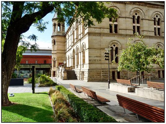 North Terrace. Südaustralisches Museum.