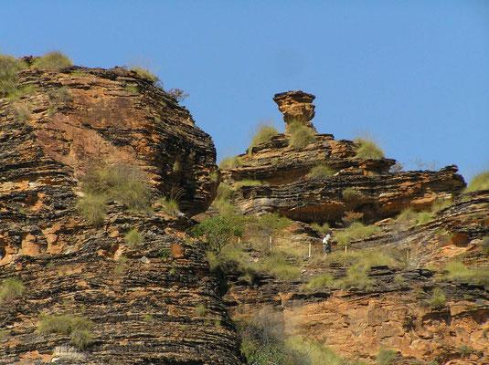 In der Pilbara Region finden sich Versteinerungen der Gruppe der aeltesten Lebensformen, die bisher gefunden wurden, Stromatolithen im Alter von fast 3,5 Milliarden Jahren.