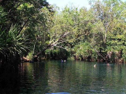 Ein Wasserloch in der Nähe von Darwin, das zum schwimmen einlädt.