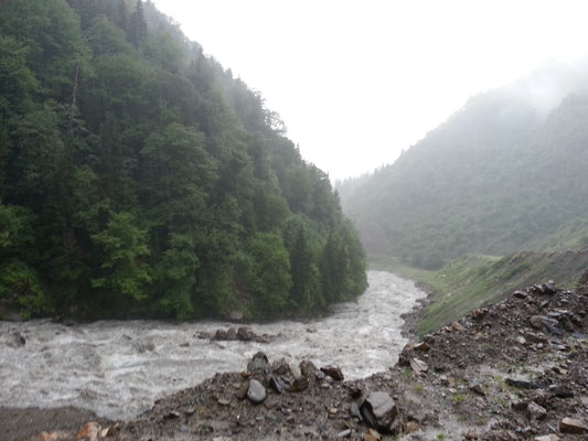 constant rain made fast streams out of the small rivers