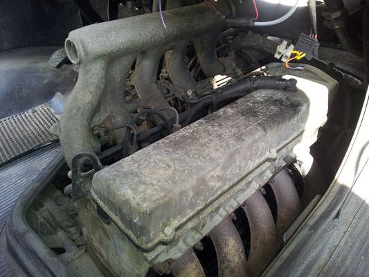 Der Motor mit 269.000 km war 100%-ig noch nie offen. Dementsprechend sieht er auch aus.