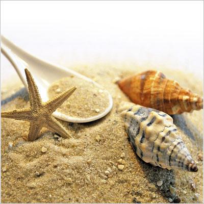 muscheln-loeffel-sand-grafik-thielen-grafikdesign-logodesign-webdesign-bilddesign
