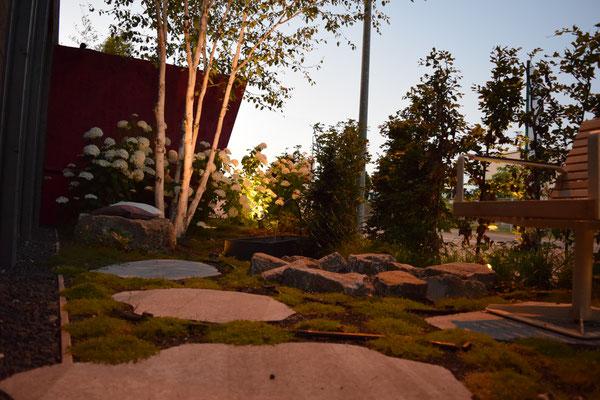 Licht im Micorgarten