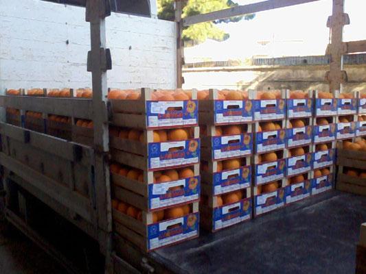 bancale arance