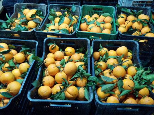 arance con foglia