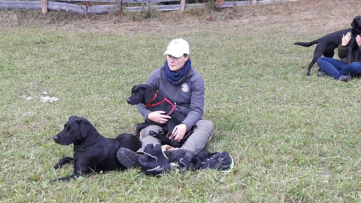 Bailey und Clockwork Dice Clay schauen beim Open Training zu
