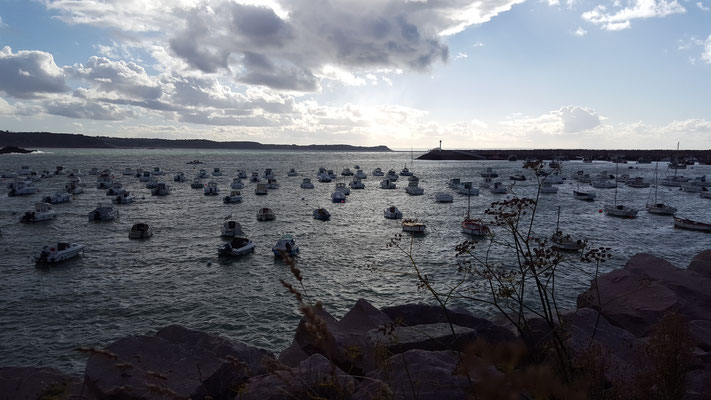 Vue du Port d'Erquy