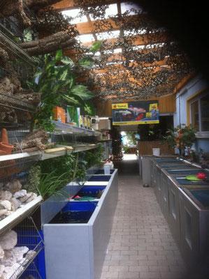 Kaltwasser Verkaufsanlage Zoo Kellner