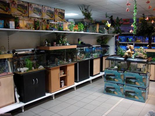 Aquarien Ausstellung 3 Zoo Kellner