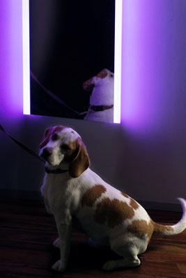 Wandspiegel RGB LED 20