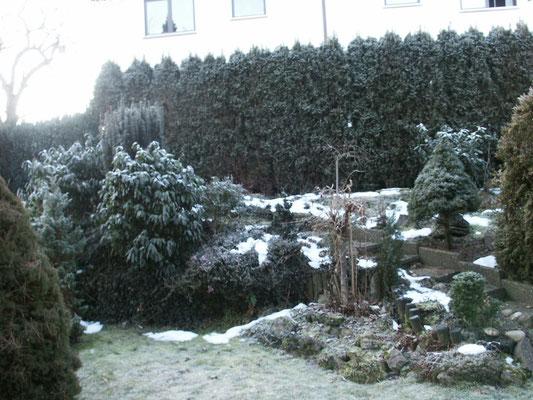 Privatgarten vorher