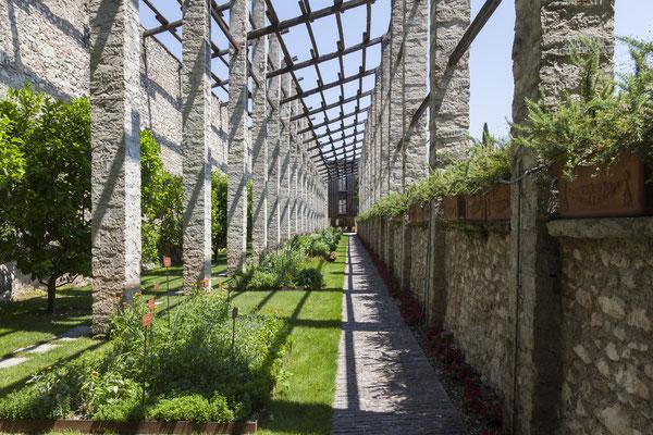 Limonaia herbs © Villa Feltrinelli