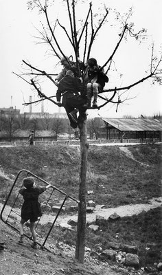 1943 Zone d'Ivry - ville de paris - BHdV - Roger-Viollet