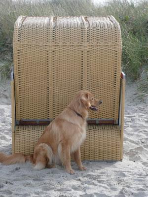 Verstecken spielen hinter Strandkörben - gleich muss ich die Chris suchen