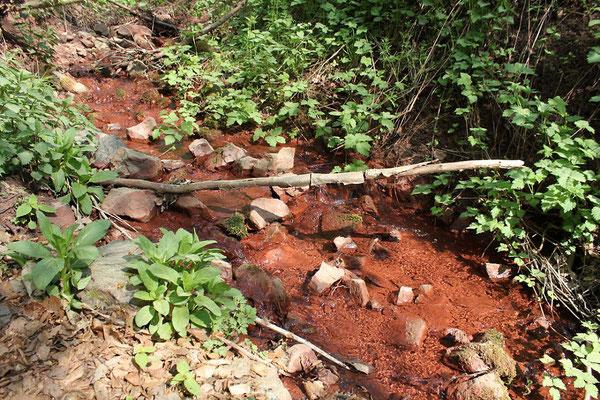 Der Rinkenbach bei der Grube Ypsilanta mit Eisenablagerungen, April 2011