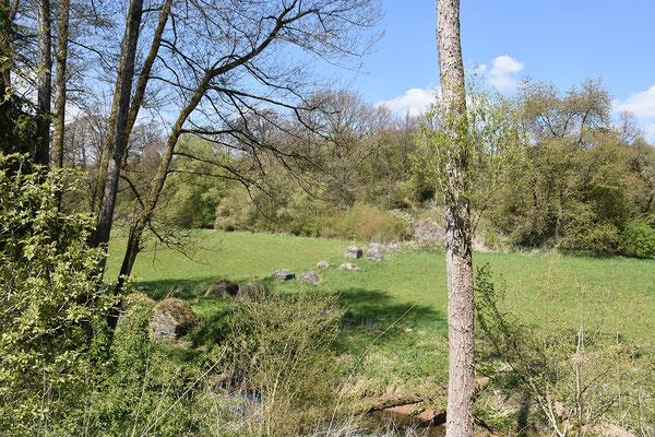 Betonfundamente der Verladebrücke bei Eschenau. Im Gebüsch auf der gegenüberliegenden Seite die Verladestelle auf die Kerkerbachbahn