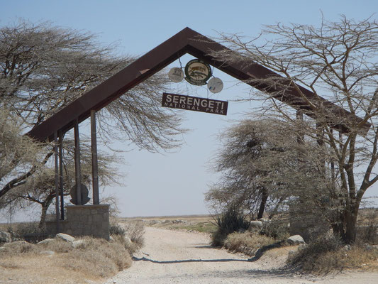 Tor zur Serengeti / Gate to serengeti