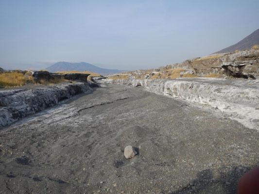 trockenes Flussbett / Dry riverbed
