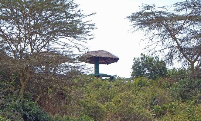 Picknickplatz im Arusha NP / Picnic area Arusha NP
